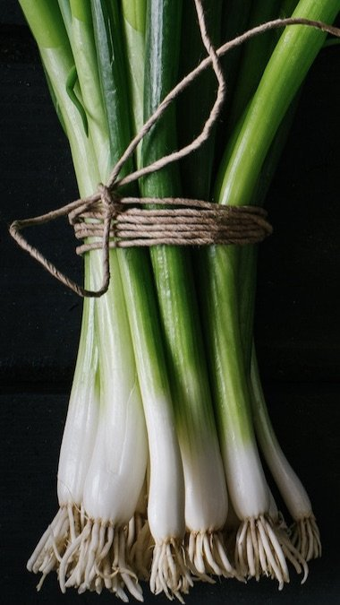 Bunch of delicious fresh spring onions